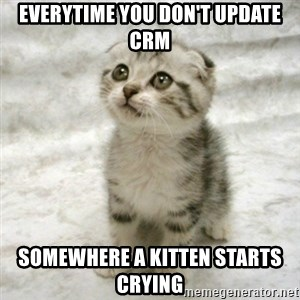 Can haz cat - Everytime you don't update CRM Somewhere a kitten starts crying