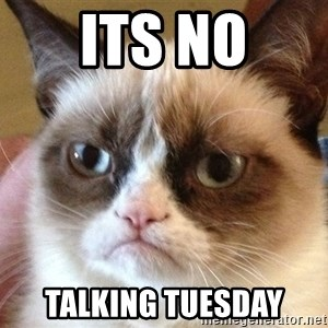 Angry Cat Meme - its no talking tuesday