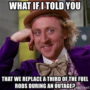 Willy Wonka - what if I told you that we replace a third of the fuel rods during an outage?