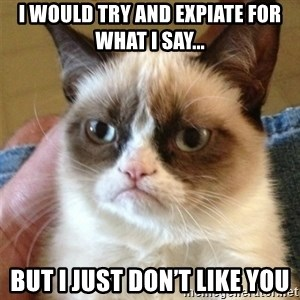 Grumpy Cat  - I would try and expiate for what I say... But I just don't like you