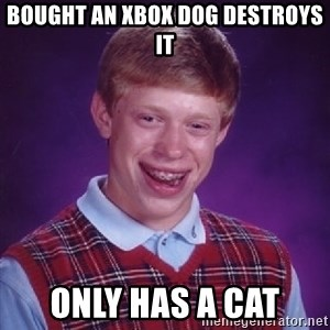 Bad Luck Brian - bought an xbox dog destroys it only has a cat