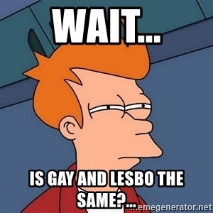 Futurama Fry - Wait... is gay and lesbo the same?...
