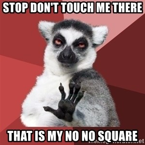 Chill Out Lemur - Stop don't touch me there  that is my no no square
