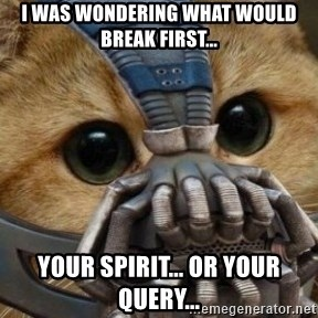 bane cat - I was wondering what would break first... Your spirit... Or your query...