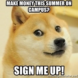 Dogeeeee - Make money this summer on campus? Sign me up!