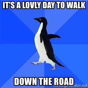 Socially Awkward Penguin - it's a lovly day to walk  down the road