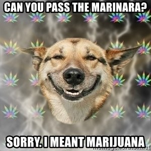 Stoner Dog - can you pass the marinara? sorry. i meant marijuana