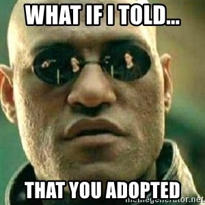 What If I Told You - What if i told... That you adopted
