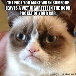 Angry Cat Meme - The face you make when someone leaves a wet cigarette in the door pocket of your car.