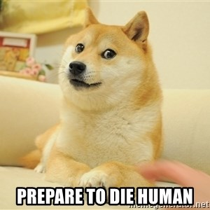 so doge - prepare to die human
