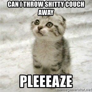 Can haz cat - can i throw shitty couch away pleeeaze