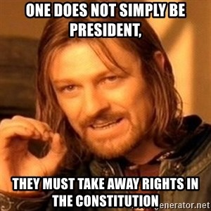 One Does Not Simply - One does not simply be president, they must take away rights in the Constitution