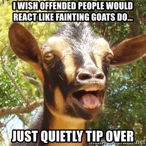 Illogical Goat - I wish offended people would react like fainting goats do... Just quietly tip over