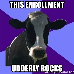 Coworker Cow - This Enrollment Udderly Rocks
