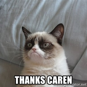 Grumpy cat good - Thanks Caren