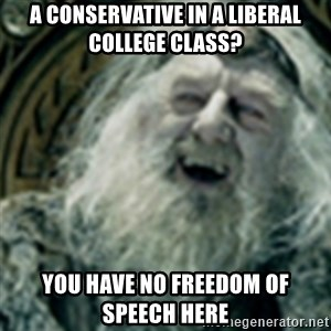 you have no power here - a conservative in a liberal college class? you have no freedom of speech here
