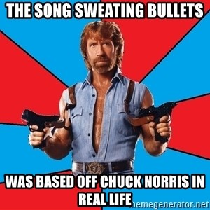 Chuck Norris  - The song sweating bullets Was based off Chuck Norris in real life