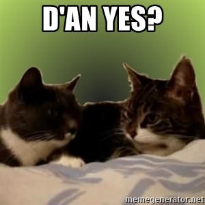 Two Talking Cats - d'an yes?