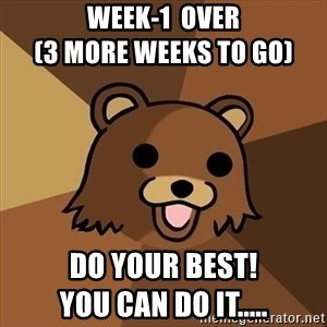 Pedobear - week-1  over                                  (3 more weeks to go) Do your best!                       you can DO IT.....