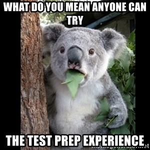 Koala can't believe it - what do you mean anyone can try the test prep experience