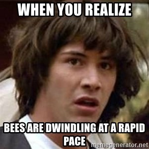 Conspiracy Keanu - when you realize  bees are dwindling at a rapid pace