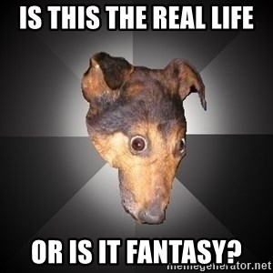 Depression Dog - Is this the real life or is it fantasy?