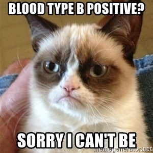 Grumpy Cat  - Blood type B positive? Sorry I can't be