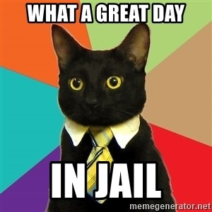 Business Cat - what a great day in jail