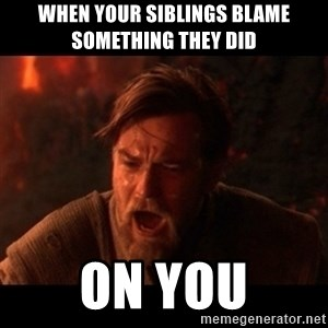 You were the chosen one  - when your siblings blame something they did  ON YOU