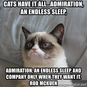 Grumpy cat good - Cats have it all...admiration, an endless sleep,  admiration, an endless sleep, and company only when they want it.      Rod Mckuen