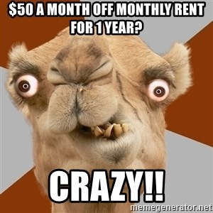 Crazy Camel lol - $50 a month off monthly rent for 1 year? Crazy!!