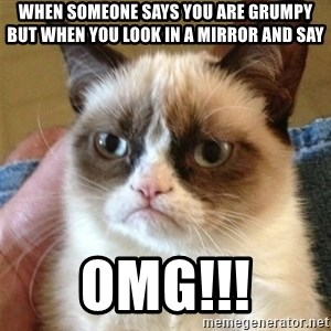 Grumpy Cat  - When someone says you are grumpy but when you look in a mirror and say  OMG!!!