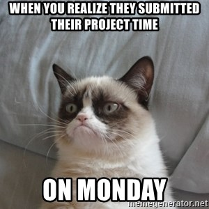 Grumpy cat good - When you realize they submitted their Project Time on monday