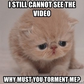 Super Sad Cat - I still cannot see the video why must you torment me?