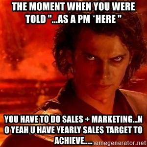 "Anakin Skywalker - The moment when you were told ""...as a PM *here ""  you have to do sales + marketing...n o yeah u have yearly sales target to achieve....."