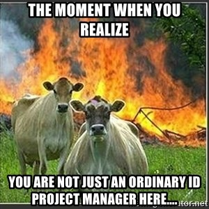 Evil Cows - The moment when you realize you are not just an ordinary ID project manager here....