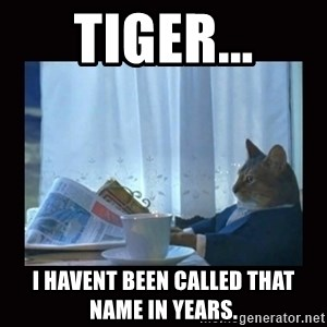 i should buy a boat cat - Tiger... I havent been called that name in years.