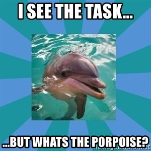 Dyscalculic Dolphin - I see the task... ...but whats the porpoise?