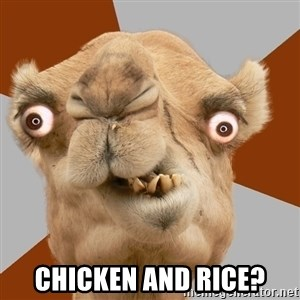 Crazy Camel lol - Chicken and rice?