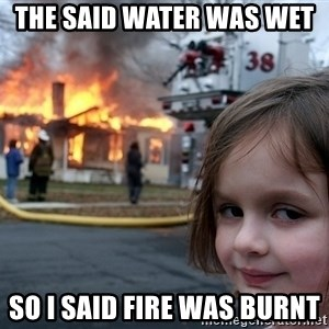 Disaster Girl - The said water was wet  so i said fire was burnt