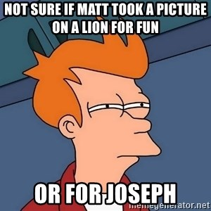 Futurama Fry - Not sure if Matt took a picture on a lion for fun Or for Joseph