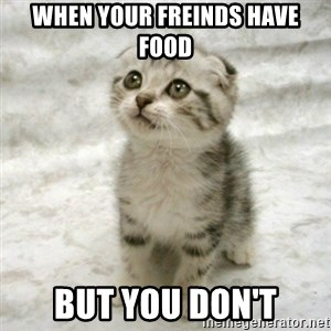 Can haz cat - when your freinds have food but you don't