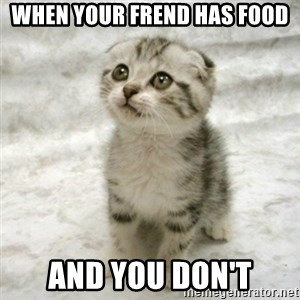 Can haz cat - when your frend has food and you don't