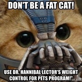 bane cat - don't be a fat cat! use dr. hannibal lector's weight control for pets program!""