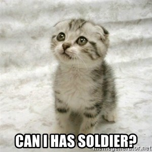 Can haz cat - Can i has soldier?