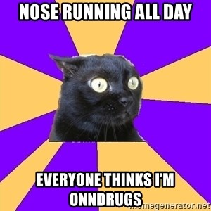 Anxiety Cat - Nose running all day Everyone thinks I'm onndrugs