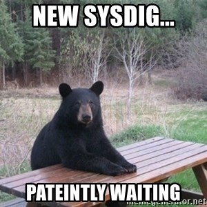 Patient Bear - New sysdig... Pateintly waiting