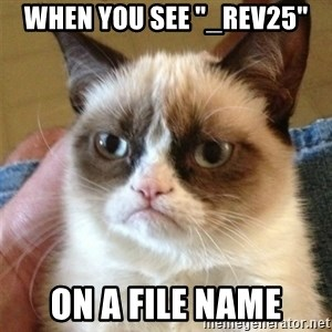 """Grumpy Cat  - WHEN YOU SEE """"_REV25"""" ON A FILE NAME"""
