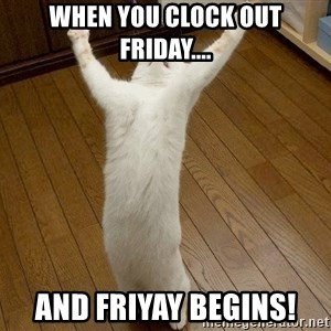 praise the lord cat - When you clock out Friday.... And FriYAY begins!