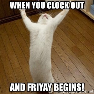praise the lord cat - When you clock out And FriYAY begins!